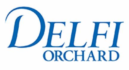 logo-delfi